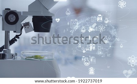 Science technology concept. Scientific examination. Scientist. Photo stock ©