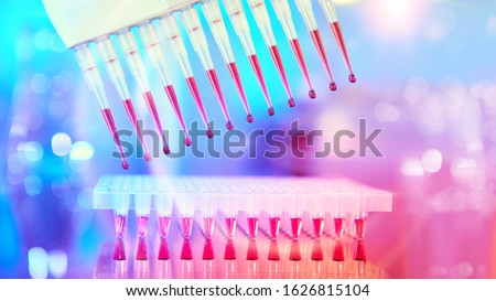 Scientific neon lights, futuristic background. Multichannel pipette tips filled in with reaction mixture to amplify DNA in plastic wells. next generation sequencing high throughput.
