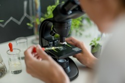 Scientist doing research on plants