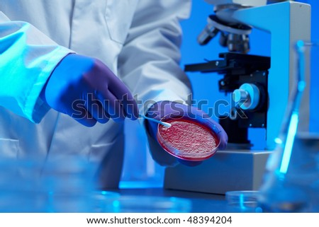 Scientist examining culture sample in laboratory blue lighting