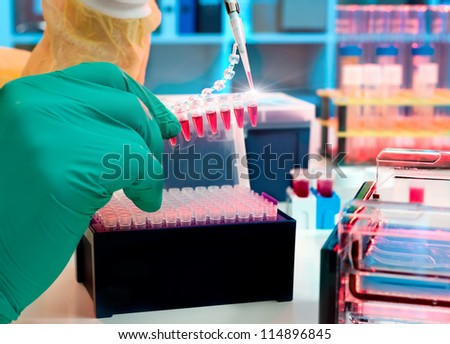 Scientist loads PCR samples for DNA analysis
