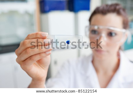 Scientist looking at a microscope slide with the camera focus on the object
