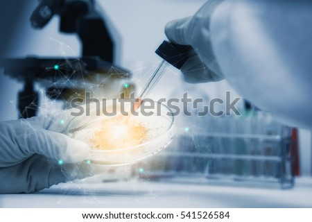 Scientist with equipment and science experiments ,laboratory glassware containing chemical liquid for design or decorate your content,copy space,mock up. #541526584