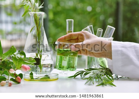 Scientist with natural drug research, Natural organic and scientific extraction in glassware, Alternative green herb medicine, Natural skin care beauty products, Laboratory and development concept.