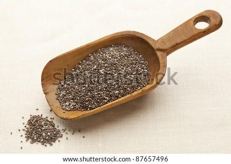 scoop of chia seeds - stock photo