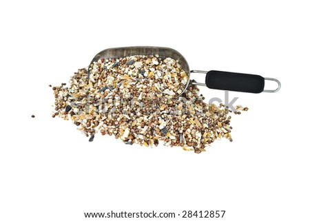Scoop of wild bird seed isolated on a white background
