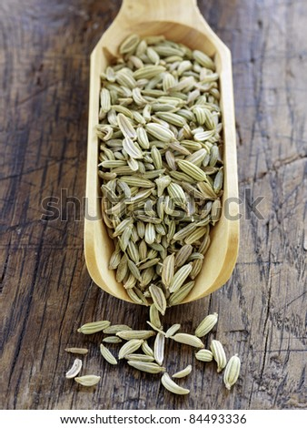 Scoopful of fennel seeds