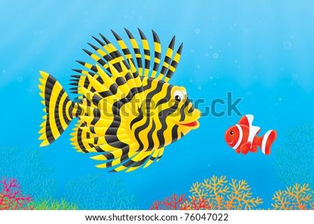 Scorpion Fish Drawing Scorpion-fish And Anemonefish