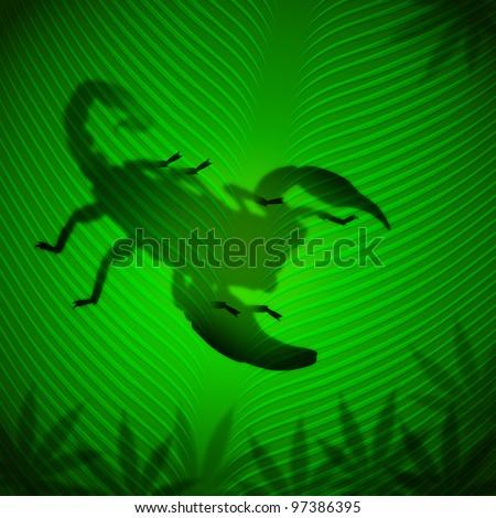 Scorpion shadow on banana leaf in the tropical sun