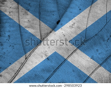 Scotland flag leaf texture
