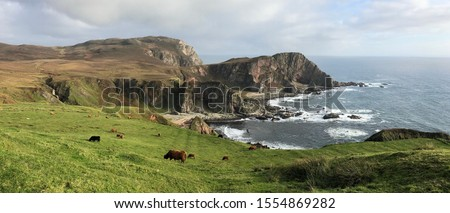 Scotland the most wonderful place on earth for scenery southern tip of the whisky isle of Islay. Splendid towering cliffs with eagles soaring vast waterfall and pasture land up to the cliff edge #1554869282