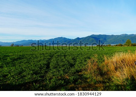 Scott Valley with the marble mountains in the background. Scott Valley is located in Siskiyou County California.  ストックフォト ©