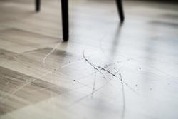 Scratched Laminate Floor Damage. Destroyed House Flooring