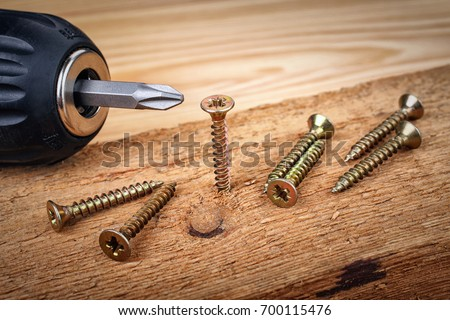 Screw being screwed into a piece of wood by cordless drill. Concept tools and repair work.