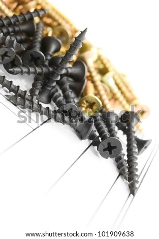 Screws. On a white background.
