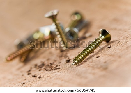 screws screwed in wood with wood shavings