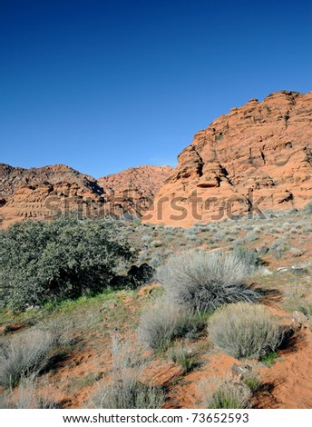 Scrub brush dots the desert in the morning sun in Snow Canyon State Park in Utah.