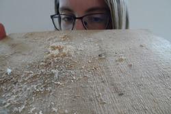 Scrutinizing look along a sawn board with sawdust.