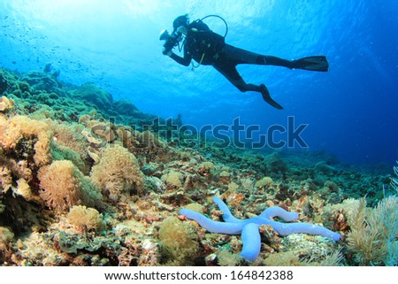 Scuba Diver and coral reef with starfish #164842388