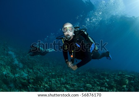 scuba diver dives on coral reef