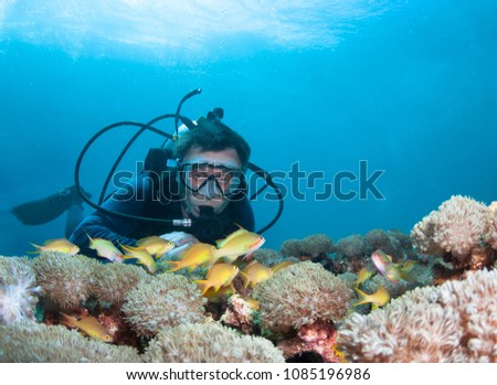 Scuba diver exploreds coral reef. #1085196986