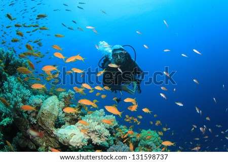 Scuba Diver explores coral reef with tropical fish #131598737