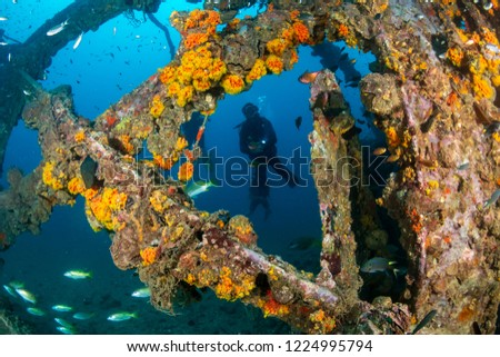 SCUBA diver exploring an old, coral encrusted underwater shipwreck in a tropical ocean (Boonsung, Thailand) #1224995794