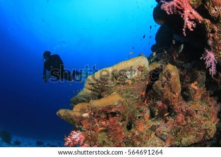 Scuba diver exploring coral reef #564691264