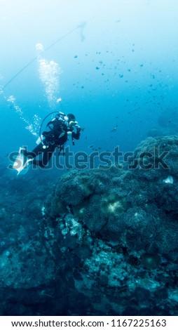 SCUBA DIVER, fishes, and bubbles #1167225163