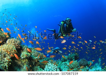 Scuba Diver in Ocean #107087159
