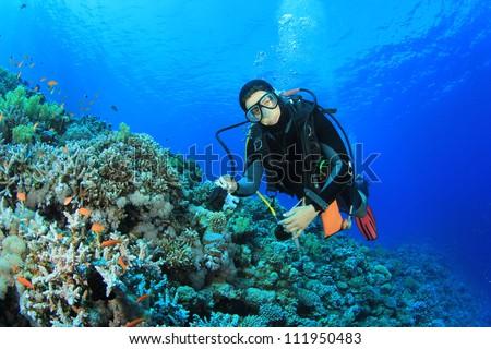 Scuba Diver in the Red Sea #111950483