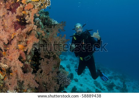 scuba diver on colorfull reef #58889438