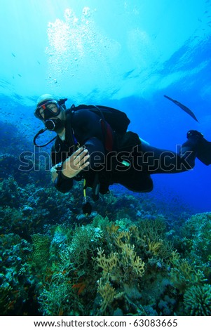 Scuba Diver on coral reef followed by a Cornetfish #63083665
