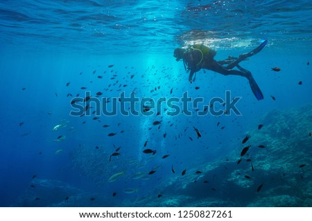 Scuba diver on water surface look at shoal of fish underwater, Mediterranean sea, Medes Islands, Costa Brava, Spain Photo stock ©
