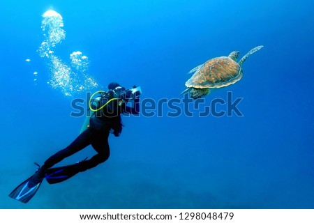 Scuba diver photographer swimming with the sea turtle. Blue sea, underwater turtle and diver. Underwater photography from swimming with sea turtles.