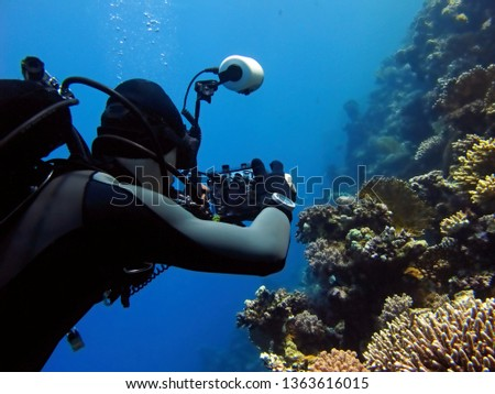 Scuba diver photographer taking pictures on the coral reef. Underwater photo, diver with camera on the reef. Scuba diver, blue ocean, tropical corals and fish. Colorful marine wildlife.