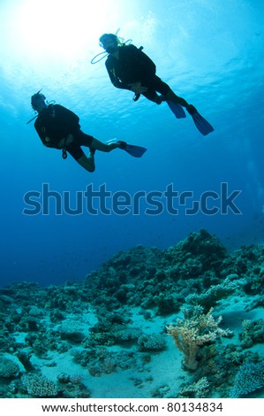 scuba diver silhouette #80134834