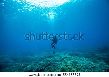 Scuba diver. Sipadan island. Celebes sea. Malaysia. #554985595