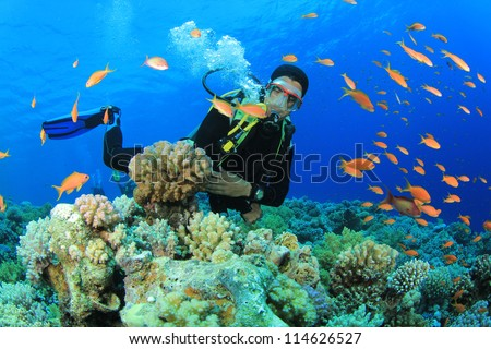Scuba Diver swims through tropical fish on coral reef #114626527