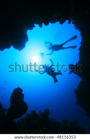 Scuba Divers descend into an Underwater Canyon
