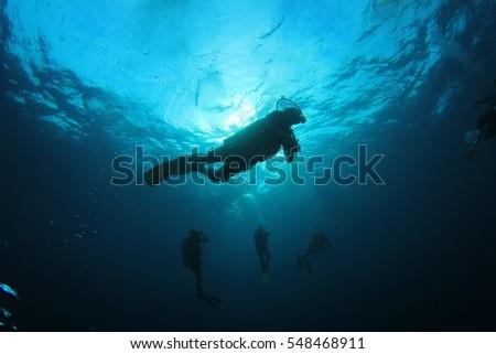 Scuba divers diving #548468911