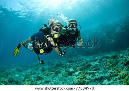 scuba divers enjoy a scuba dive #77584978