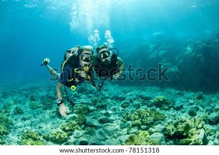 scuba divers enjoy a scuba dive