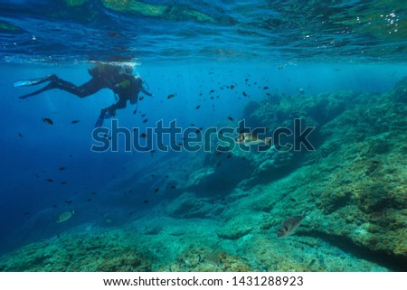 Scuba divers first dive, adult with a child on water surface look at fish underwater, Mediterranean sea, France #1431288923