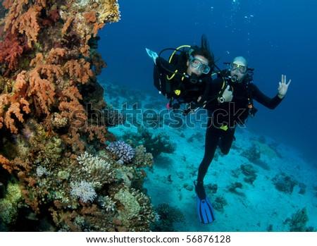 scuba divers happy together #56876128
