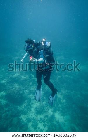 Scuba divers in Anilao Philippines #1408332539