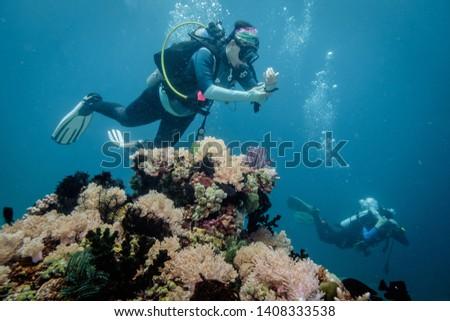 Scuba divers in Anilao Philippines #1408333538