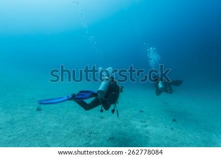 Scuba Divers passing through sandy bottom tropical sea #262778084