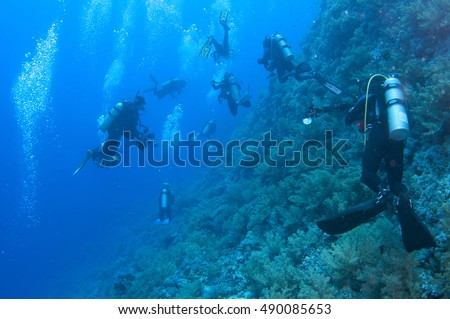 Scuba divers swim over colorful tropical coral reef, Red sea, Egypt. #490085653