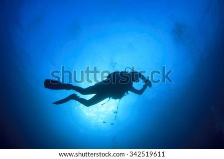 Scuba diving #342519611